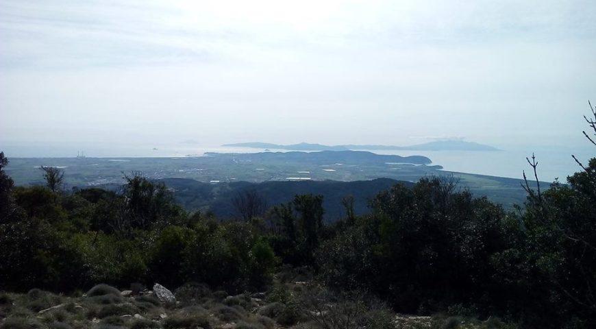 Monte Calvi_Ilaria