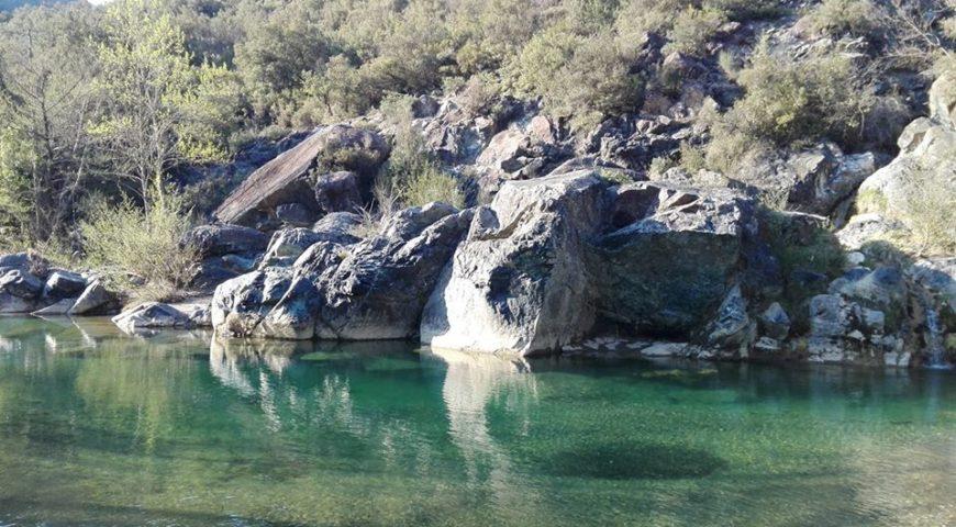 fiume pavone